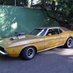 Mustang Blower Nande  001