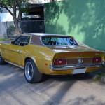 Mustang Blower Nande  002