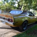 Mustang Blower Nande  003