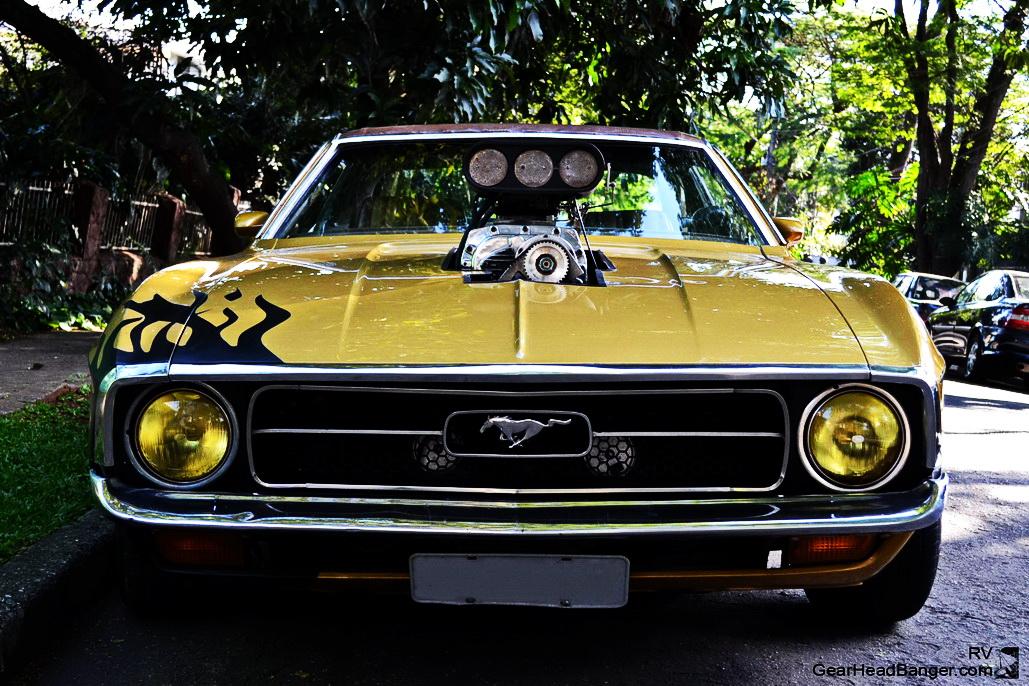 Mustang Blower Nande  004