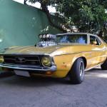 Mustang Blower Nande  005