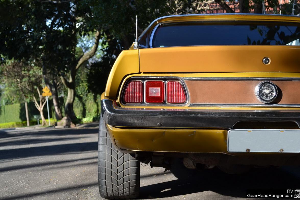 Mustang Blower Nande  012