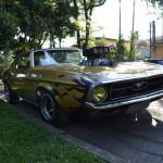 Mustang Blower Nande  014