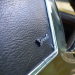 Mustang Blower Nande  015