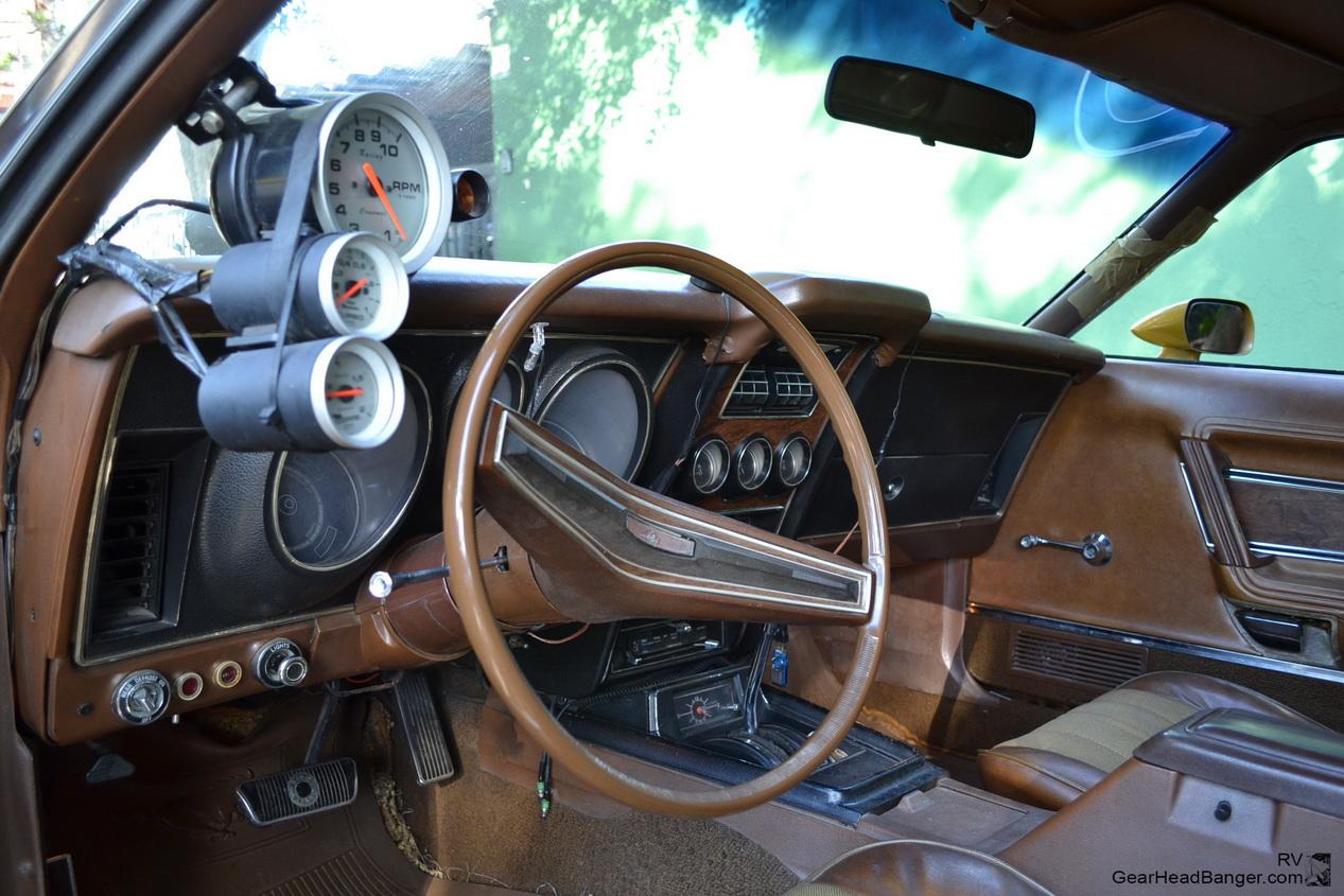 Mustang Blower Nande  017