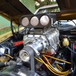 Mustang Blower Nande  027