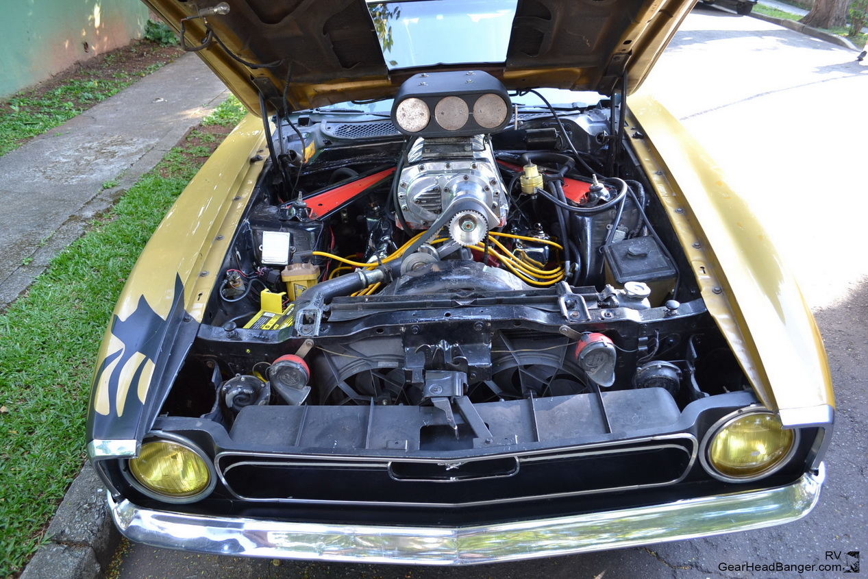 Mustang Blower Nande  030