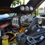 Mustang Blower Nande  031